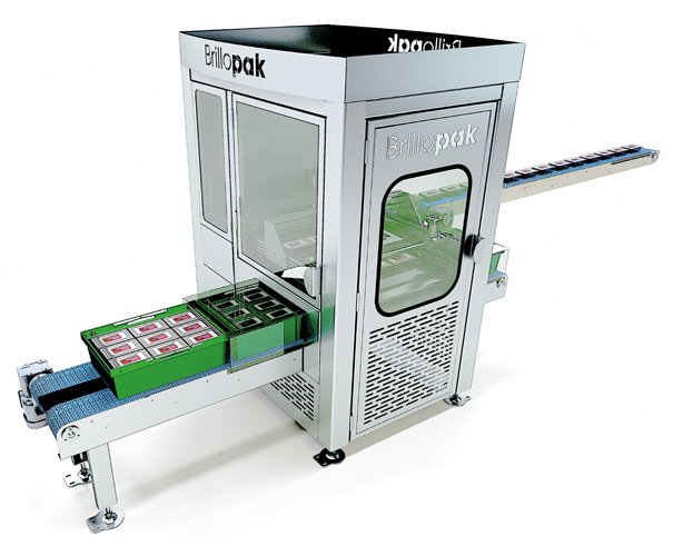 brillopak robotic layer packing system